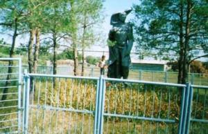 Хутор Новоцарицынский. Братская могила, где захоронен погибший